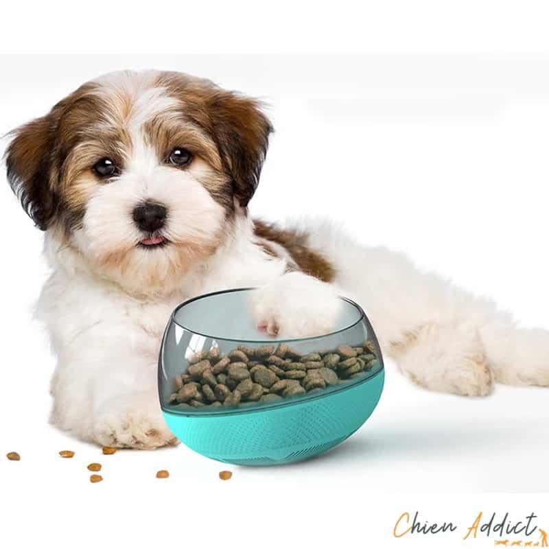 gamelle anti glouton bascule et chien