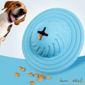 chien et jeu de stimulation bleu