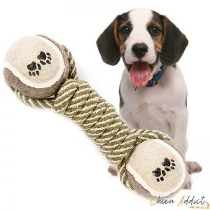 jouet corde chien a macher